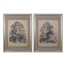 Sterling Industries 151-011/S2 - THE ELM AND THE SYCAMORE - FINE ART GICLEE UNDER GLASS