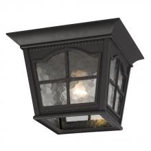 Galaxy Lighting 320389BK - 1-Light Outdoor Flush Mount Ceiling Lantern - Black with Clear Water Glass