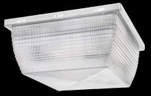 "RAB Lighting VAN4I - VANDALPROOF 12"" X 12"" CEILING 2 X 75W INCANDESCENT"