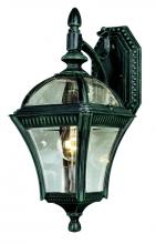 "Trans Globe 5081 BG - Washington 16"" Wall Lantern"