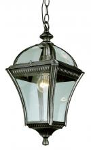 "Trans Globe 5086 VG - Washington 16"" Hanging Lantern"