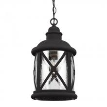 Sea Gull 6221401-12 - One Light Outdoor Pendant