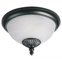 Sea Gull 89248PBLE-12 - Fluorescent Outdoor Two Light Close to Ceiling